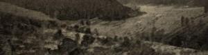 Прва светска војна: Трибор...