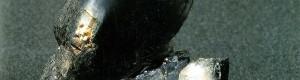 Кременов кристал кој е црн поради присуството на игличестиот арфведсонит (Arfvedsonit)