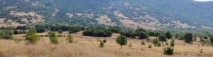 Некрополата Грамада кај Три камна