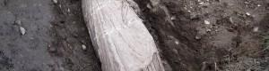 Јануари 2013: Мермерна статуа пронајдена во Тополчани при копање на темели за новата селска црква