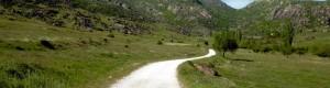 2011: Патот кон Дабница...