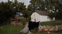 """Црква """"Свети Димитриј"""", село Вепрчани"""